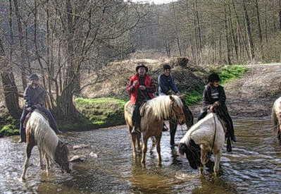 Western Rando -  09/10 randonnée politiciens